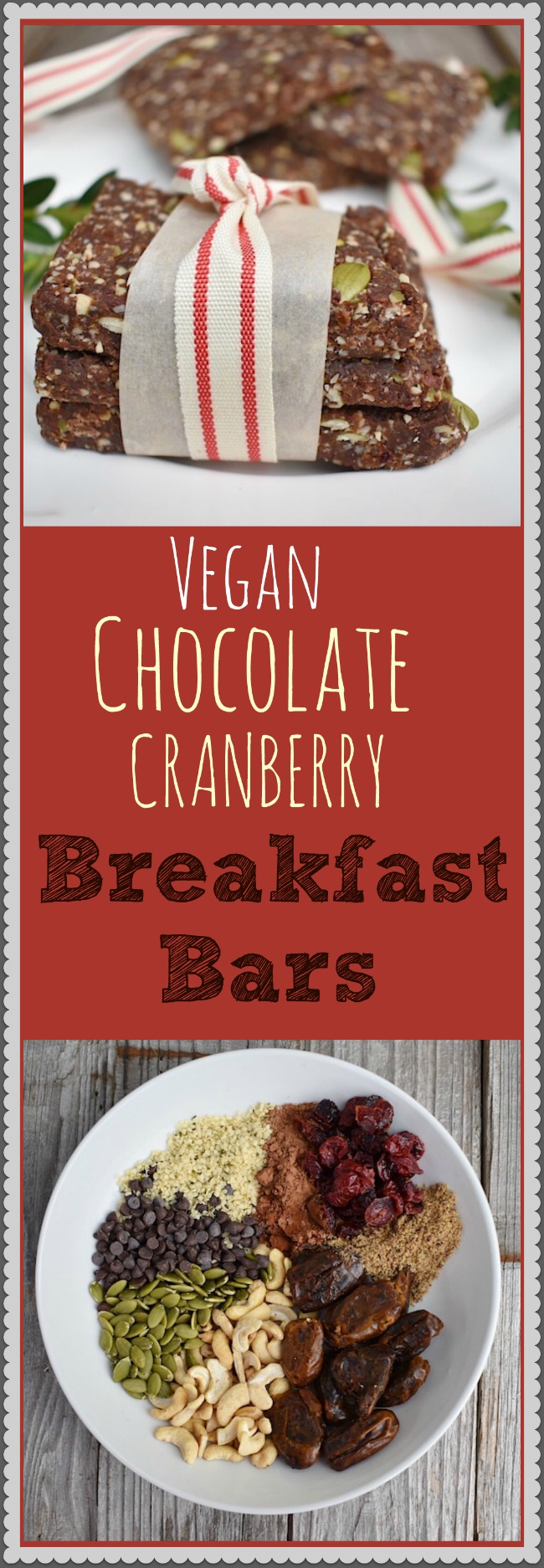 Vegan Chocolate Cranberry Breakfast Bars